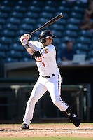 Surprise Saguaros outfielder Dariel Alvarez (1), of the Baltimore Orioles organization, during an Arizona Fall League game against the Salt River Rafters on October 14, 2013 at Surprise Stadium in Surprise, Arizona.  Salt River defeated Surprise 3-2.  (Mike Janes/Four Seam Images)