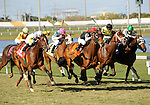 10 March 20: Society's Chairman (no. 1), ridden by Jose Lezcano and trained by Roger Attfield, wins the 59th running of the grade 3 Appleton Stakes for four year olds and upward at Gulfstream Park in Hallendale Beach, Florida.