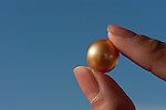 Jewelmer Pearlfarm, golden South Sea Pearl