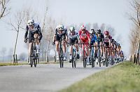 peloton rolling through De Moeren with Team Qhubeka ASSOS setting the pace for Giacomo Nizzolo (ITA/Qhubeka ASSOS)<br /> <br /> 45th Oxyclean Classic Brugge-De Panne 2021 (ME/1.UWT)<br /> 1 day race from Bruges to De Panne (204km)<br /> <br /> ©kramon