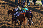 November 6, 2020: Fire at Will, ridden by Ricardo Santana, Jr., wins the Juvenile Turf Presented By Coolmore America on Breeders' Cup Championship Friday at Keeneland on November 6, 2020: in Lexington, Kentucky. John Voorhees/Eclipse Sportswire/Breeders Cup/CSM