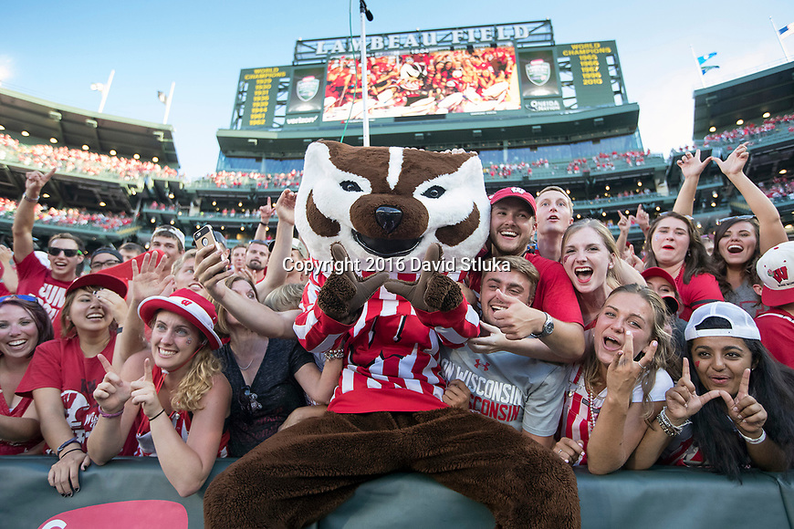 Wisconsin Badgers mascot Bucky Badger does a Lambeau Leap while celebrating with fans during an NCAA college football game against the LSU Tigers Saturday, September 3, 2016, in Green Bay, Wis. The Badgers beat the Tigers 16-14. (Photo by David Stluka)