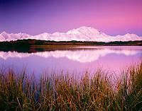 freshwater, Denail, Mount McKinley, reflected in a pond at twilight, Denali National Park, Alaska, USA