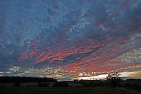 Thornage, Norfolk, England, 05/08/2009..Pre dawn sky over Norfolk farmland.