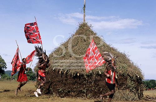 Lolgorian, Kenya. Siria Maasai Manyatta; Eunoto ceremony; moran carrying flags running past the magic house.