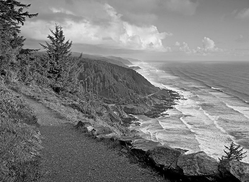 S00111M.tiff   Trail at Cape Perpetua, Oregon