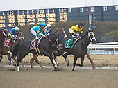 Russell Road's Gotham Stakes - for Maria