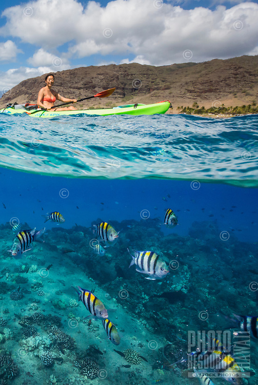 A woman kayaking over reef fish, with West O'ahu in the background