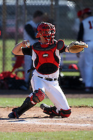 February 28, 2010:  Catcher Robert (Rob) Case of St. John's Red Storm during the Big East/Big 10 Challenge at Raymond Naimoli Complex in St. Petersburg, FL.  Photo By Mike Janes/Four Seam Images