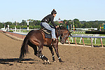 June 7, 2014: Scene at Belmont Park on the morning of the Belmont Stakes, Elmont, NY ©Joan Fairman Kanes/ESW/CSM