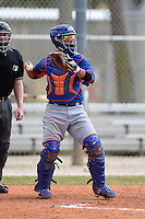 New York Mets catcher Albert Cordero (36) during a minor league spring training game against the Miami Marlins on March 28, 2014 at Roger Dean Stadium in Jupiter, Florida.  (Mike Janes/Four Seam Images)