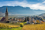 Italy, Alto Adige - Trentino (South Tyrol), Termeno sulla strada del vino: famous wine growing region, country of the Gewuerztraminer   Italien, Suedtirol, suedlich von Bozen, Tramin an der Weinstrasse: beruehmte Weinbauregion, Land des Gewuerztraminers