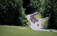 emmediate climbing for the riders after the stage start<br /> <br /> Stage 8: Cluses (FRA) to Champéry (SUI)(113km)<br /> 71st Critérium du Dauphiné 2019 (2.UWT)<br /> <br /> ©kramon