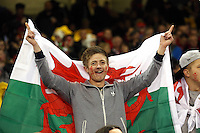 Pictured: A young man Wales supporter with a flag. Saturday 15 November 2014<br />