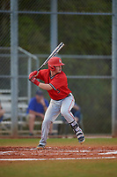 Ball State Cardinals shortstop Noah Powell (3) bats during a game against the Mount St. Mary's Mountaineers on March 9, 2019 at North Charlotte Regional Park in Port Charlotte, Florida.  Ball State defeated Mount St. Mary's 12-9.  (Mike Janes/Four Seam Images)