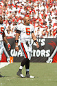 IKE HILLIARD, of the Tampa Bay Buccaneers , in action during the Buccaneers games against the Tennessee Titans, in Tampa Bay, FL on October 14, 2007.  ..The Buccaneers won the game 13-10...COPYRIGHT / SPORTPICS..........