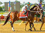 JULY 04, 2021: Firenze Fire in post parade for John A. Nerud Stakes, going 7 furlongs, at Belmont Park in Elmont, New York. Sue Kawczynski/Eclipse Sportswire/CSM