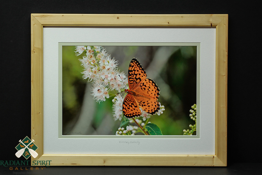 """""""Fritillary Butterfly"""", hand-made pine frame, conservation grade matting, TruVue Museum Glass. Contact us for availability."""