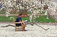 students flower spring