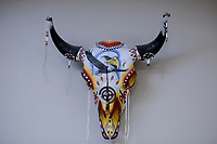 USA, Nebraska, Stadt Macy, Omaha Reservation, Bueffelkopf mit Malerei