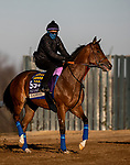 November 4, 2020: Gamine, trained by trainer Bob Baffert, exercises in preparation for the Breeders' Cup Filly & Mare Sprint at Keeneland Racetrack in Lexington, Kentucky on November 4, 2020. Alex Evers/Eclipse Sportswire/Breeders Cup