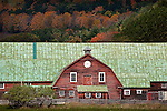 Fall foliage and a red barn in Pomfret, VT, USA