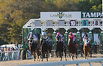 Watch Me Go with Louis Garcia wins The Tampa Bay Debry at Tampa Bay Downs in Oldsmar Fl 3.12.2011  #9 horse