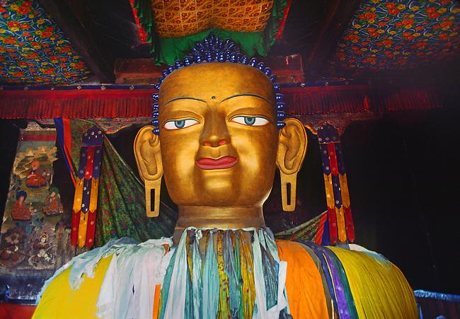 The largest SHAKYAMUNI BUDDHA statue in LADAKH is 39 feet high and resides at SHEY GOMPA (monastery)  - LADAKH, INDIA.