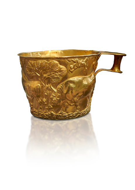 Vapheio type Mycenaean gold cup depicting a wild bull hunt , Vapheio Tholos Tomb, Lakonia, Greece. National Archaeological Museum of Athens.  White background.<br /> <br />  Two masterpieces of Creto - Mycenaean gold metalwork were excavated from a tholos tomb near Lakonia in Sparta in 1988. Made in the 15th century BC, the gold cups are heavily influenced by the Minoan style that was predominant in the Agean at the time. The bull hunt was popular with  Mycenaean  and Minoan artists and symolised power and fertility. The distinctive shape of the cup is kown as 'Vapheio type'.