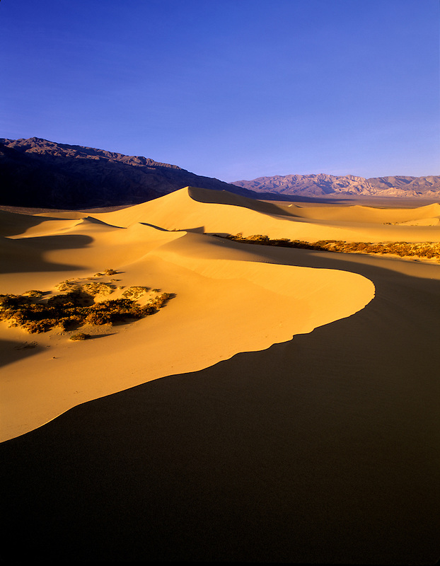 Knife edged sand dune with Funeral Mountains. Death Valley National Park, California