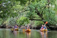 France, Gironde (33), bassin d'Arcachon, Biganos:  Excursion en canoé dans la  Vallée de la Leyre  // France, Gironde, Bassin d'Arcachon, Biganos:   Leyre valley canoeing