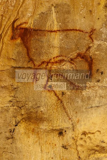 Europe/Europe/France/Midi-Pyrénées/46/Lot/Payrignac: Grottes de Cougnac - grotte ornée du paléolithique. Couple de bouquetins [Non destiné à un usage publicitaire - Not intended for an advertising use]