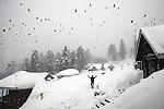 2009_02_Gulmarg Ski Fields, Kashmir, India