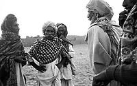 11.2008  Pushkar (Rajasthan)<br /> <br /> Negotiations between buyers and sellers of camels during the annual fair.<br /> <br /> Négociation entre acheteurs et vendeurs de chameaux pendant la foire annuelle.