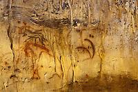 Europe/Europe/France/Midi-Pyrénées/46/Lot/Payrignac: Grottes de Cougnac - grotte ornée du paléolithique. Mamouth et l'homme blessé [Non destiné à un usage publicitaire - Not intended for an advertising use]