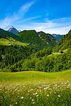 Oesterreich, Salzburger Land, Pinzgau, oberhalb von St. Martin bei Lofer: das Wildental vor den Loferer Steinbergen | Austria, Salzburger Land, Pinzgau, above St. Martin near Lofer: Wildental and Loferer Steinberge mountains