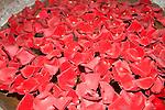 Rose Petals, Cinnamon Club Restaurant, Belgrovia, London, Great Britain, Europe
