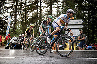 Alejandro Valverde (ESP/Movistar) up the Col de Porte (final climb to the finish)<br /> <br /> Stage 2: Vienne to Col de Porte (135km)<br /> 72st Critérium du Dauphiné 2020 (2.UWT)<br /> <br /> ©kramon