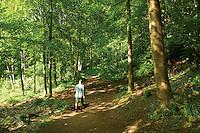 Dalkeith Country Park, Dalkeith, Midlothian