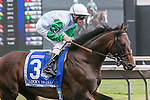 August 15, 2015. Lucky Speed and jockey Andrasch Starke in the post parade for the G3 American St. Leger. Katherin Frankovic/ESW/CSM