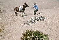 Man pulls reluctant mule thorugh desert, Mexico