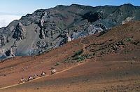 Horseback riders inside the crater of HALEAKALA NATIONAL PARK on Maui in Hawai USAi
