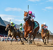2019 Honorable Miss Stakes