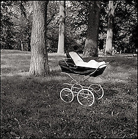 Baby stroller or Pram in the woods<br />