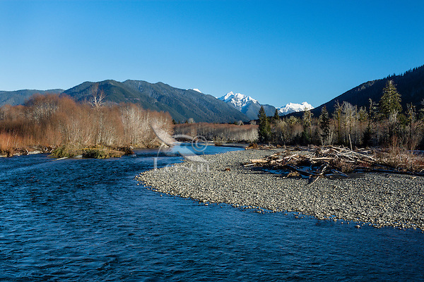 Looking up the Hoh River from Hoh River Trust lands, Olympic Peninsula, Washington.  Winter.  The snowy peaks border the South Fork of the Hoh Valley, the main Hoh River continues up, out of the photo to the left.