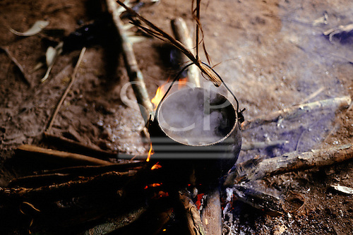 Roraima, Brazil. Fish cooking in a Yanomami Indian cooking pot on an open wood fire.