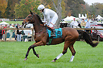 Delta Park (no. 9), ridden by Joey Elliot and trained by Jack Fisher, wins the New Jersey Hunt Cup Timber Stakes for four year olds and upward on October 22, 2011 at Moorland Farms in Far Hills, New Jersey.  (Bob Mayberger/Eclipse Sportswire)