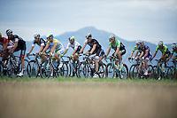 Aussi champ Simon Gerrans (AUS/Orica-GreenEDGE) in the pack<br /> <br /> 2014 Tour de France<br /> stage 15: Tallard - Nîmes (222km)