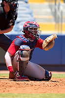 FCL Twins catcher LaRon Smith (25) during a game against the FCL Rays on July 20, 2021 at Charlotte Sports Park in Port Charlotte, Florida.  (Mike Janes/Four Seam Images)