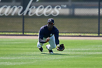 New York Yankees Jordan Scott (34) makes a diving catch during a minor league Spring Training game against the Detroit Tigers on March 22, 2017 at the Yankees Complex in Tampa, Florida.  (Mike Janes/Four Seam Images)